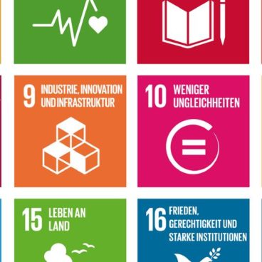 Die Sustainable Development Goals (SDGs) der Vereinten Nationen